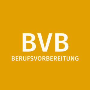BVB Folder download