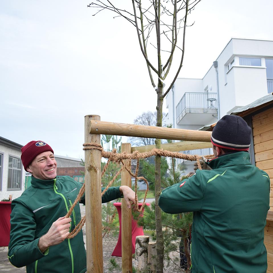 Geschäftsführer Heiko Weber pflanzt eine nordische Mehlbeere mit seinem Mitarbeiter auf dem Lavie-Gelände